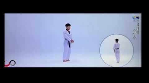 Himchari New Taekwondo Poomsae Slow Motion Bài quyền mới Taekwondo thăng 2 đẳng Quay Chậm