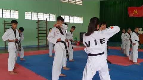 Bigak 2 - Vietnam Poomsae Team (2)