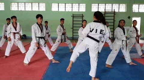 Bigak_2_-_Vietnam_Poomsae_Team_(1)
