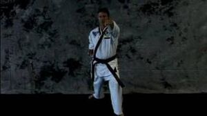 Taekwondo_Martial_Arts_Basics_Taekwondo_Lung_Punch