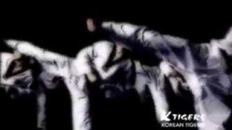 K-tigers_taekwondo_team_promotion_movie