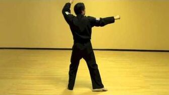 Wan_Hyo_(Step-By-Step)_-_Tae_Kwon_Do_Pattern