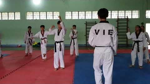 Bigak 1 - Vietnam Poomsae Team (3)