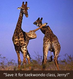 JerryGiraffe.png