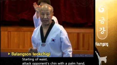Grand_Master_Kyu_Hyung_Lee_-_WTF_Poomsae_Keumgang