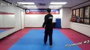 Taekwondo - Poomsae 3 (Sam Jang) Slow-motion & Mirror
