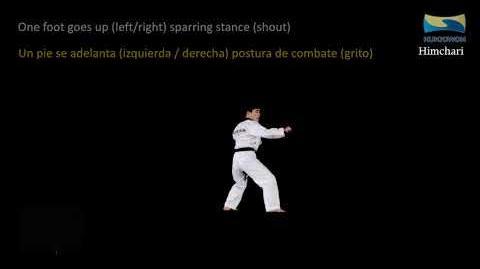 Himchari Learning New Kukkiwon Poomsae (Taekwondo English & Spanish)