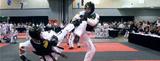 Taekwondo Semi-Free Sparring