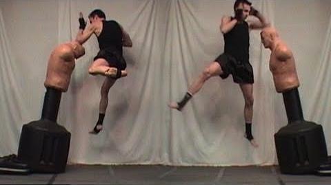 Downward Elbow Strike Tutorial (Kwonkicker)
