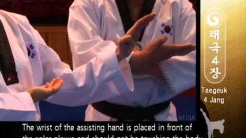 Grand Master Kyu Hyung Lee - WTF Taegeuk Sa Jang