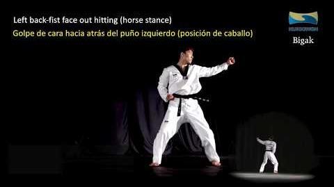 Bigak Learning New Kukkiwon Poomsae (Taekwondo English & Spanish)