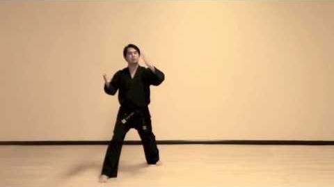 Do San (Step-By-Step) Tae Kwon Do