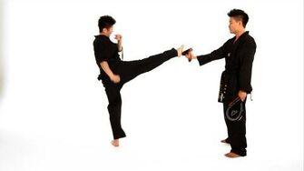 How_to_Do_a_Roundhouse_Kick_Taekwondo_Training