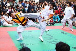 TaekkyeonSparring.jpg