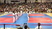 Yong In University Taekwondo Demonstration Team
