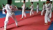 Bigak 1 - Vietnam Poomsae Team (2)