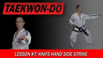Taekwon-Do_Lesson_7_Knife-Hand_Side_Strike-0