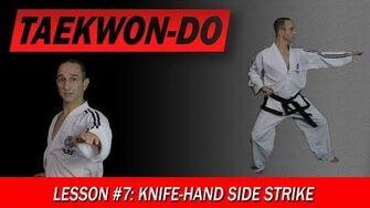 Taekwon-Do_Lesson_7_Knife-Hand_Side_Strike