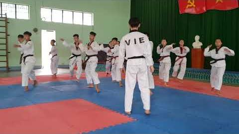 Bigak 3 - Vietnam Poomsae Team (2)-0