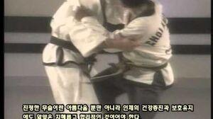 Grand_Master_Kwang_Jo_Choi_Documentary_(Korean_Sub)_3_of_5.AVI