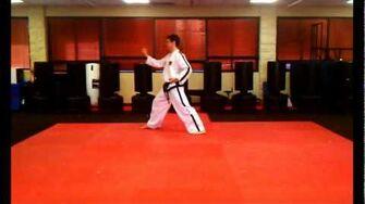 4_Directional_Block_(Saju_Maki)_-_ITF_Taekwon-Do_Patterns