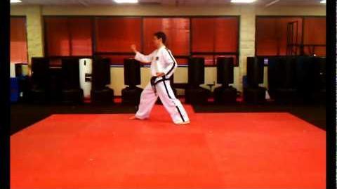 4 Directional Block (Saju Maki) - ITF Taekwon-Do Patterns
