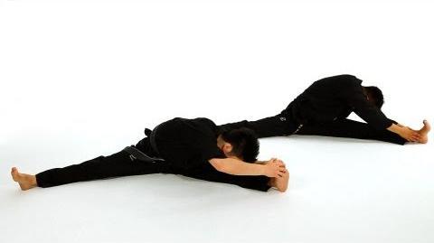 How to Do Basic Sitting Stretches Taekwondo Training