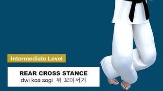 Taekwondo_2D_-_Rear_Cross_Stance_(_뒤_꼬아서기_dwi_koa_sogi_)