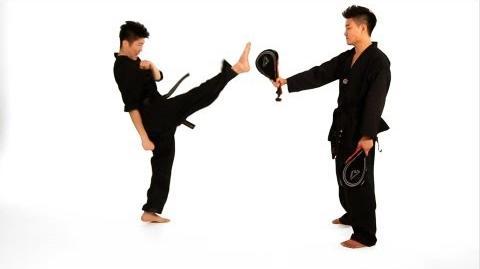 How to Do a Front Kick Taekwondo Training