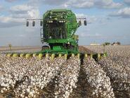 John Deere cotton harvester kv02
