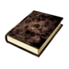 -weapon full- Asta's Grimoire