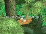 Fearsome Tortoise Egg Shell