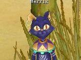 Merrix
