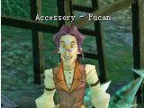 Accessory Pucan