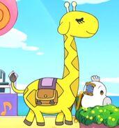 Giraffetchi