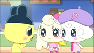 Coffretchi with Pianitchi & Mametchi 5