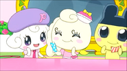 Coffretchi with Pianitchi & Mametchi 6
