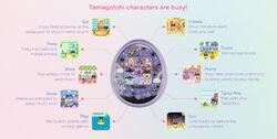 TamaOnFeatures.jpg