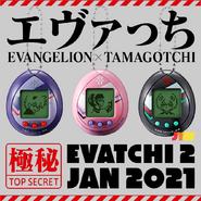 EvatchiW2Shells