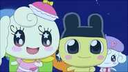 Coffretchi Mametchi run