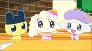 Coffretchi with Pianitchi & Mametchi 4