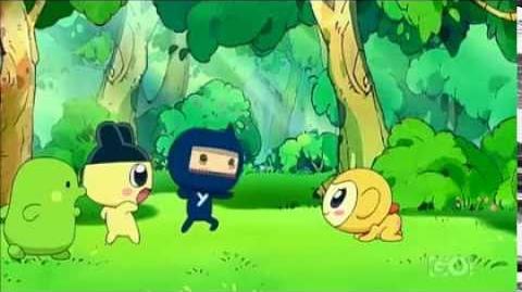 Kikitchi's Ninja Training