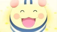 Happieststory shimashimatchi