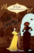 Abigail Larson's cover for First Test