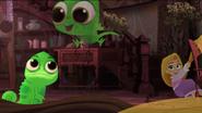 Pascal's Story