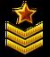 Sergeant-Major Rank.png