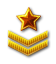 First Sergeant Rank.png