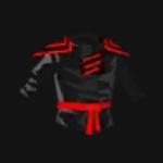 Ninja Suit