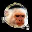 Craftitude ingredient monkey