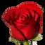 Craftitude ingredient rose